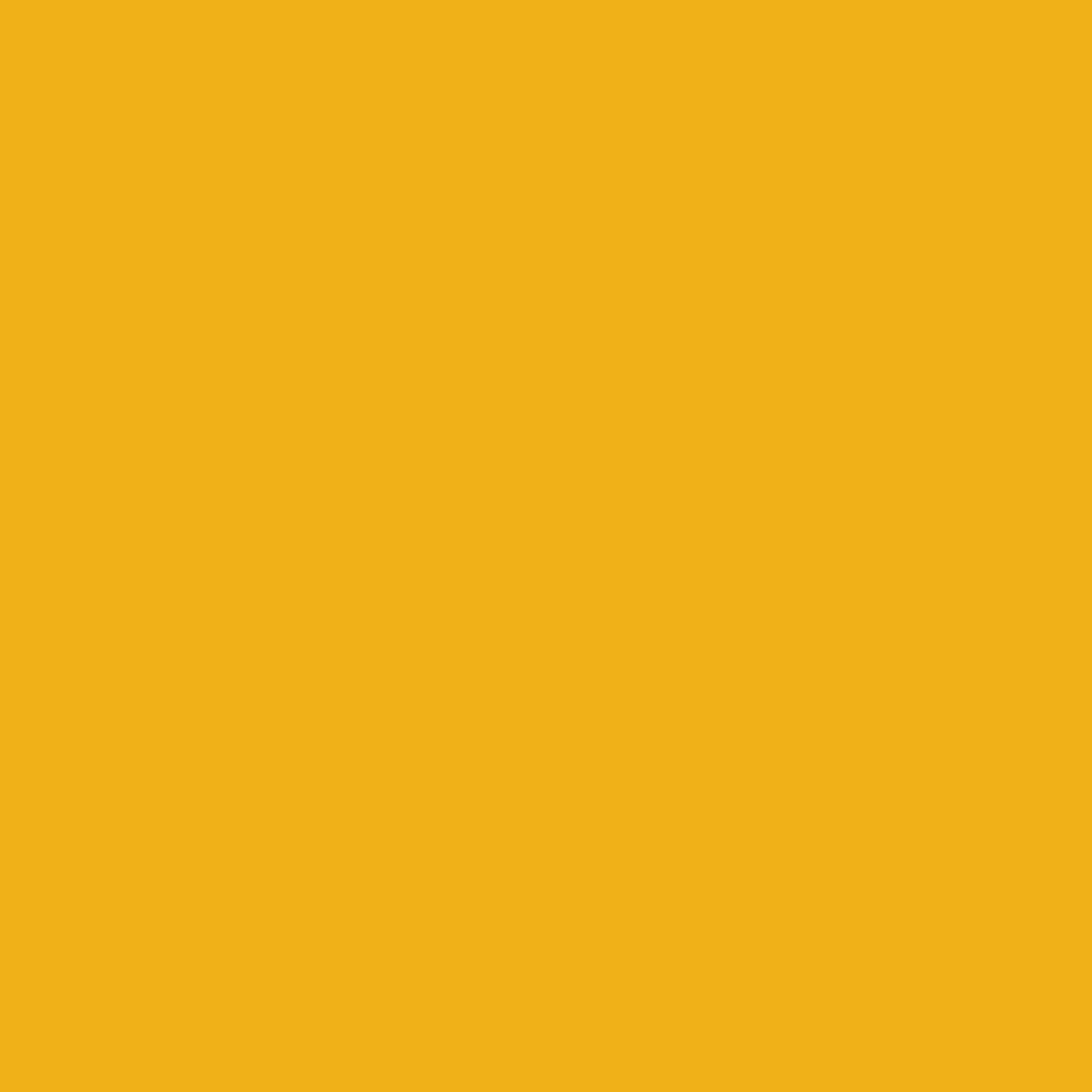 Kleur N° 16